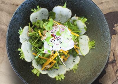 Green-Radish-Salad